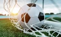 Футбольного арбитра в РПЛ дисквалифицировали на один год